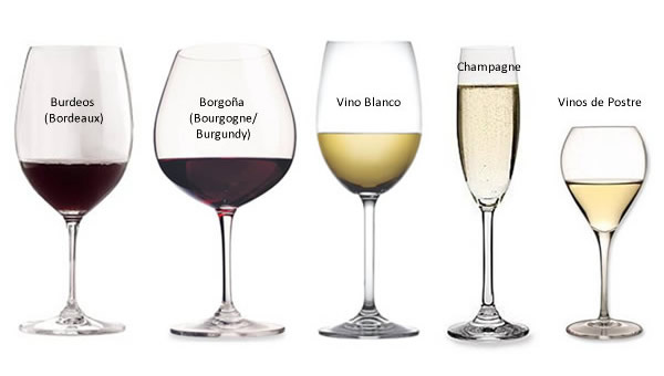 tipo-copa-vino