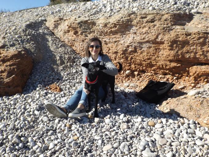 playa-y-perro